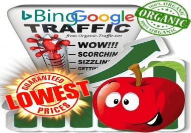 Organic Traffic from Google & Bing (White Hat SEO)