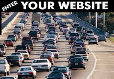 deliver you real human_ TRAFFIC_ to your website for 365 days just""