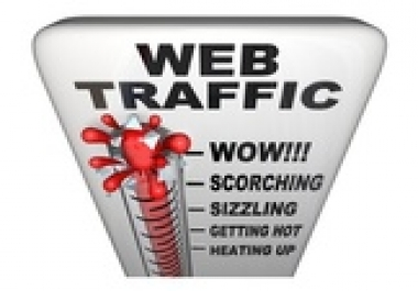 give a Guaranteed 5000+ Real visitors, traffic, page views to websites