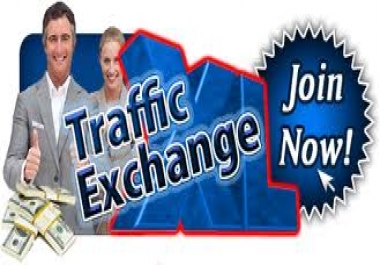 Get Unique 20,000+ Adsense Safe Visitors / Traffic To Your Website Or Any Link