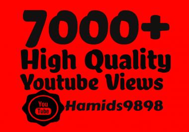 add 7000-8000+ High Quality Youtube views