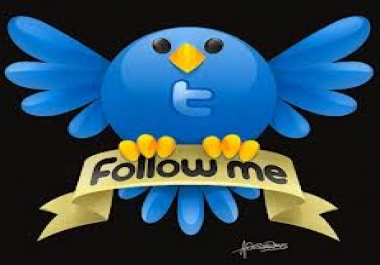 Give you 1000 Top Qualiy Followers without password