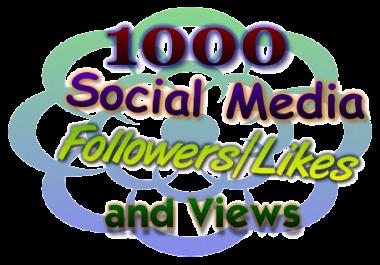 1000 Non-Drop Social Media Followers/Likes
