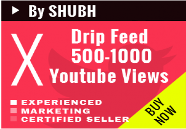 Add 500-1000 Youtube Views daily for 30 days