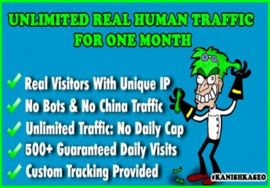 I Will Send Super TARGETED Bitcoin Traffic To Your Site Or Blog