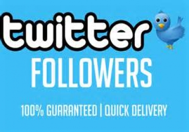 i will add you 500+ twitter followers