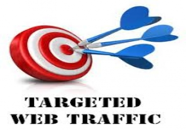 1500 Human USA Targeted traffic to your web or blog site. Get Adsense safe and get Good Alexa rank