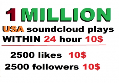 1m  safe USA soundcloud plays   within 24 hour