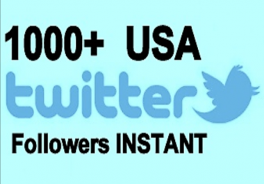 provide you 1000 USA Twitter Folowers Instant