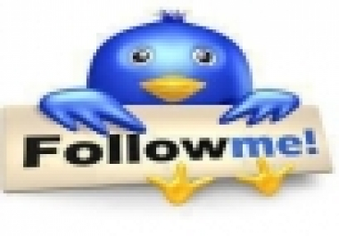 I will give you 1000+ Usa Twitter Folowers in 6-12 hours only