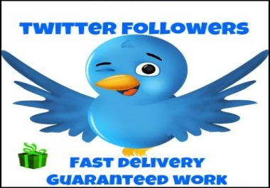 Give you 1000++++ Twitter Followers INSTANT