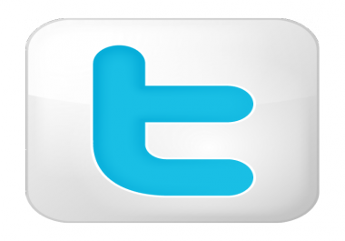 i will do 3000 twitt er follow ers in your twitter account,no need password