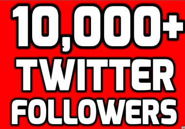 Provide Instantly 10000+ Permanent Twitter Followers Within 24 Hours