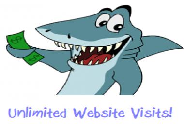 Targeted Unlimited Website Traffic Visits
