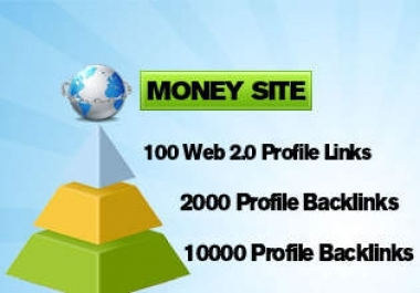 12000 multi tier pyramid with 3tiers 100 Web20 high pr prof 2000 t2 xrumer prof+10000 tier3 xrumer