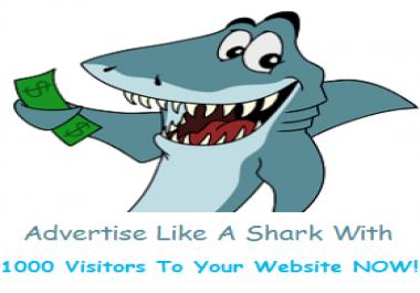 1000 Website Visitors Traffic Service
