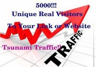 send 4000 Adsense Safe Visitors to your website blog