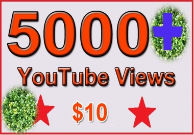 I add 5000 Non Drop Y/T fast Views 72 hours