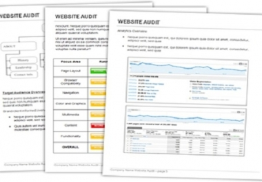 *** give you complete website audit report for google ranking***