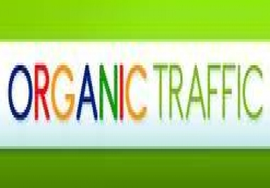 3,000+ REAL Human TARGETED Traffic From USA Or Other Country