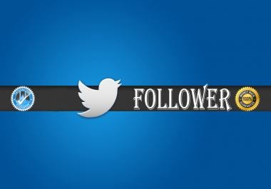 instant 1000 twitter foll-owers