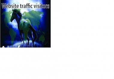 I will drive 15k actual google visitors