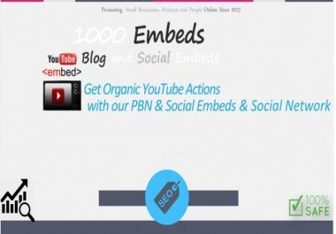 Provide 1000 Youtube embeds plus extra bonus.
