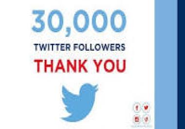 Provide instant 30000++ Twitter Folllowers for