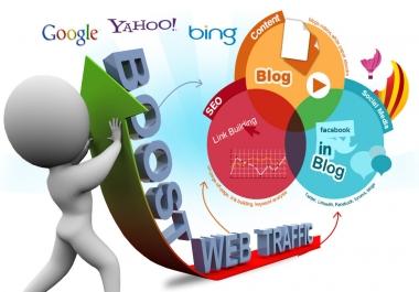 250000 USA website visitors traffic