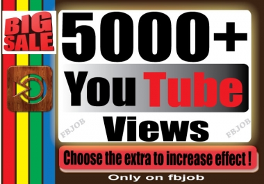 Fast 5000+ Non Drop High Quality Adsense Safe and Life Time Guaranty Views for Your Video