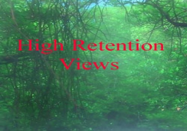 Give you 1000+ Real FAST YOUTUBE views 48 -72 Hour