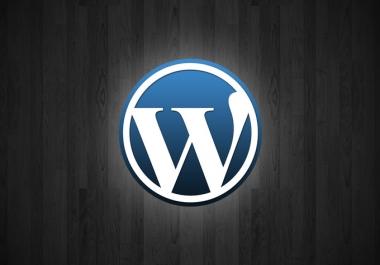 I will install and customize Wordpress script
