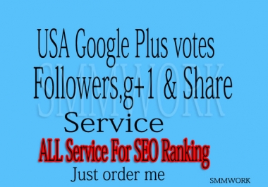 I Will Give U 300 USA Base Google Plus Circle Follows or 120 G+1 Votes For Website Only