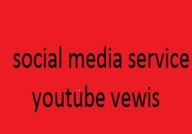 add 2000 super fast  Youtube views