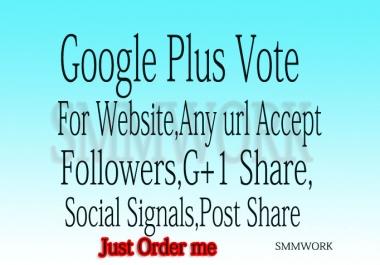 I Will Give U 410+ USA base Google Plus Circle Follows Only