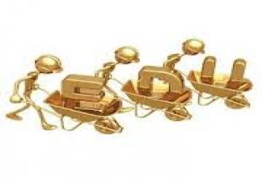 do 200 EDU Backlinks for your site from Edu Blogs Google Safe Full Report..