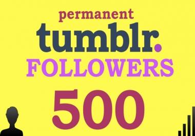 I will add 500 Permanent Tumblr Followers