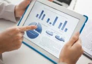 provide Custom Actionable seo Audit Report ..