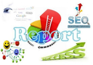 create a full seo Report for your website using Internet Business Promoter..