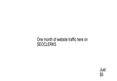 Send Keyword targeted UNLIMITED Google search traffic for 1 Month