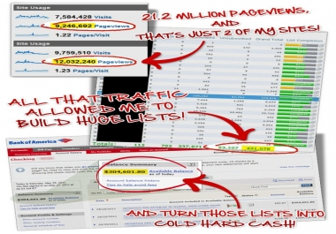 I will drive source target real unlimited WEBSITE traffic for one month