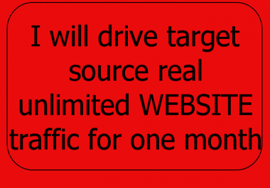 I will drive target source real unlimited WEBSITE traffic for one month