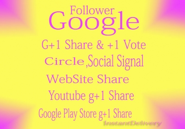 I will provide 100+5 USA Based Real & permanent Google Plus Ones 1 ly 4 u