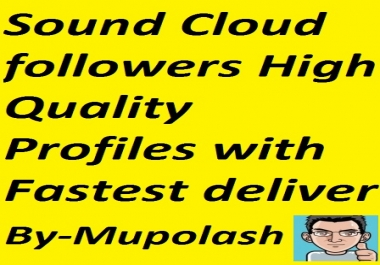 1000 Sound cloud followers with High quality profiles