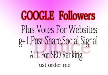 I will add 350 google +1 PLUS one vote to your website only