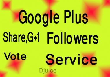 Add 100+ USA base Google Plus Vote or Circle or Follow