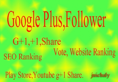 Give you 100 Google Plus vote Share for web Site video Blog