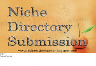 do 15 niche directories submissions manually..