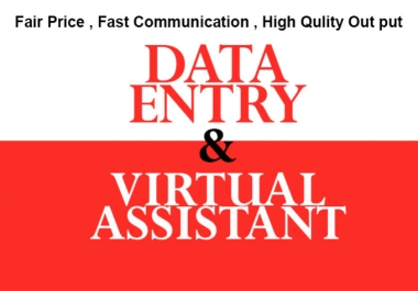 I will do Data Entry and be your Virtual Assistant upto 5 Hours