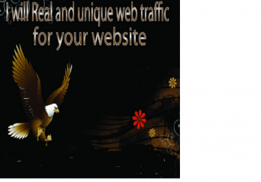 I will provide 20 000 social web traffic